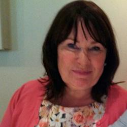 Lesley Traynor - SWC Board Member